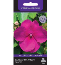 Бальзамин Акцент Виолет 10 шт семян