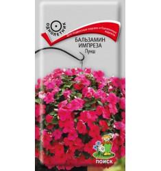 Бальзамин Импреза Пунш 10 шт семян