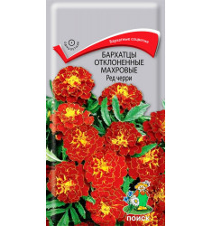 Бархатцы отклонённые Ред Черри семена 0,3 грамма