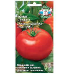 Томат Непас 7 (Непасынкующийся гигантский) семена 0,1 гр
