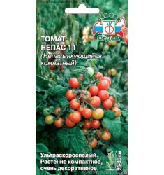 Томат Непас 11 (Непасынкующийся комнатный) семена 0,1 гр