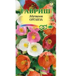 Комнатный Абутилон Органза семена 10 штук