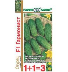 Огурец Гармонист F1 20 шт семян корнишон автор